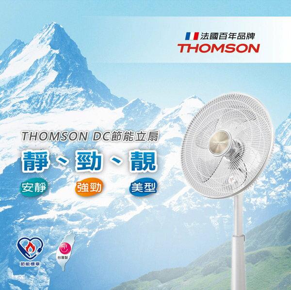 【THOMSON湯姆盛】14吋DC節能直流馬達立扇(SA-F01D4)
