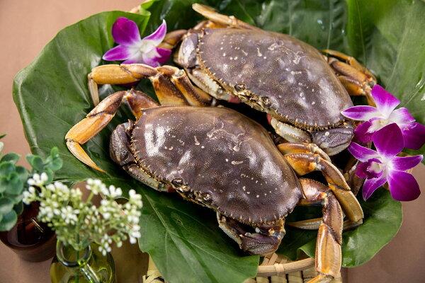 【食魚屋】菲律賓產地直銷鮮活沙母550g±50g/隻