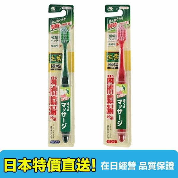 【海洋傳奇】日本小林製藥 生葉牙刷 硬度普通/柔軟