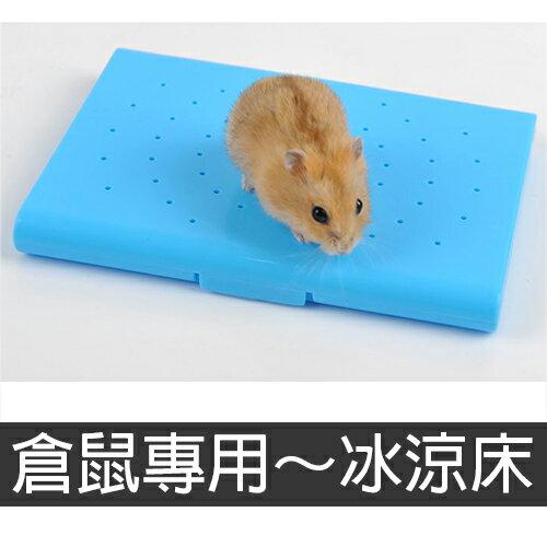 【小樂寵】夏季涼爽.冰涼床~倉鼠專用