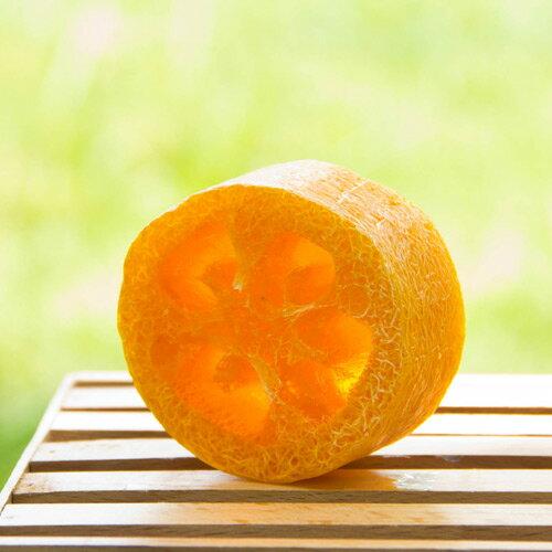 向日葵絲瓜皂