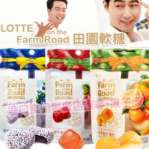 韓國樂天 田園水果軟糖 草莓/藍莓/橘子/蕃茄/葡萄 [KR162]