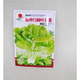【菜種子-圓葉白/紅莧菜-10g-原包】約2萬粒 3-9月播 菜種,10g/包,5包/組-5101002