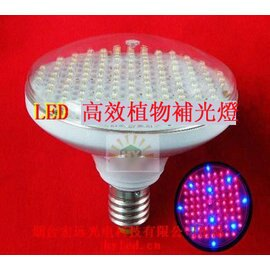 【LED植物補光燈-生長期-螺口-3.5W-120燈珠-直徑12.4*高10cm-1個/組】led水培植物補光燈-5101012