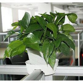 【屏風卡托-T字型十字型-塑膠-17*15*5.5cm-10個/組】 辦公隔斷工位專用綠植種菜花盆託盤-5101020