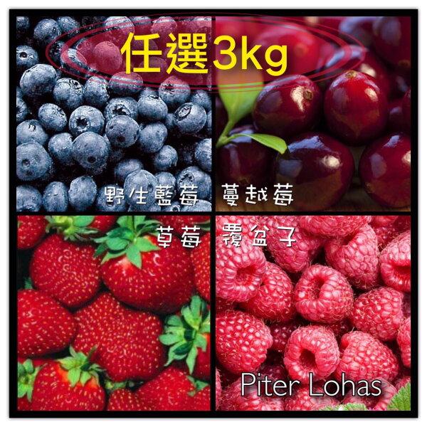 I.Q.F.急速冷凍莓果系列,任選3公斤免運費![特選頂級蔓越莓/覆盆子/草莓/野生藍莓/森林綜合莓果(前四種混和)]