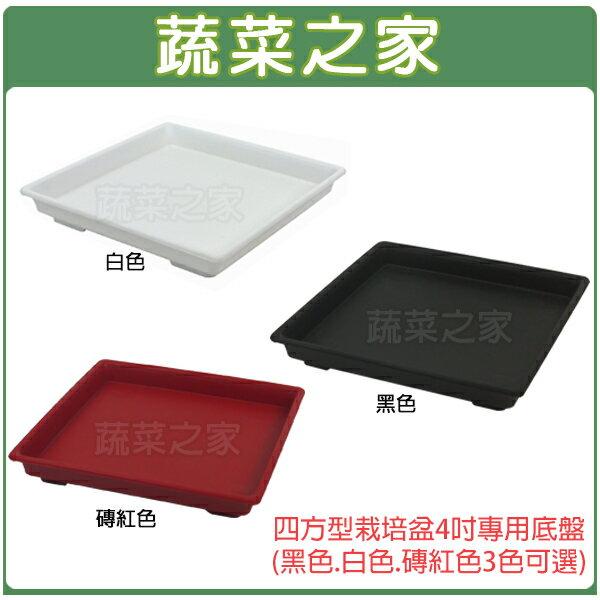 【蔬菜之家015-F10】四方型栽培盆4吋專用底盤(黑色.白色.磚紅色3色可選)