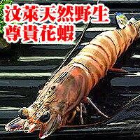 【台北濱江】汶萊大花蝦600g/盒
