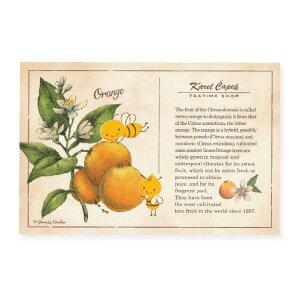 Orange Tree【卡雷爾恰佩克Karel Capek 】-山田詩子/手繪明信片