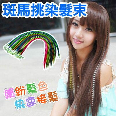 ☆雙兒網☆耐熱材質可上電棒/印地安彩色髮束/斑馬紋路接髮片【MF007】斑馬挑染髮束