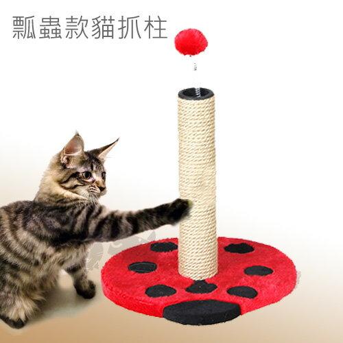 【美國Elite】可愛瓢蟲-貓抓柱