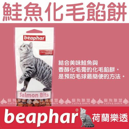 +貓狗樂園+ 荷蘭beaphar【樂透愛貓鮭魚化毛餡餅。小。35g】90元 0