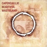雷鳥樂團:美麗荒原 Capercaillie: Beautiful Wasteland (CD) 0