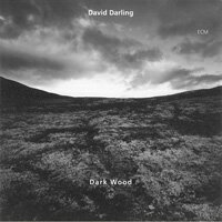 大衛.達林 David Darling: Dark Wood (CD) 【ECM】 - 限時優惠好康折扣