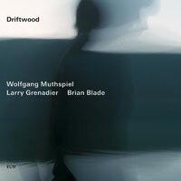 沃爾夫岡.馬斯俾爾:漂流木 Wolfgang Muthspiel: Driftwood (CD) 【ECM】 0