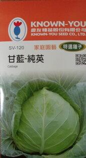 【尋花趣】農友種苗 甘藍-純英 高麗菜(特選種子) 蔬菜種子  每包約1.2公克(g) 保證新鮮種子