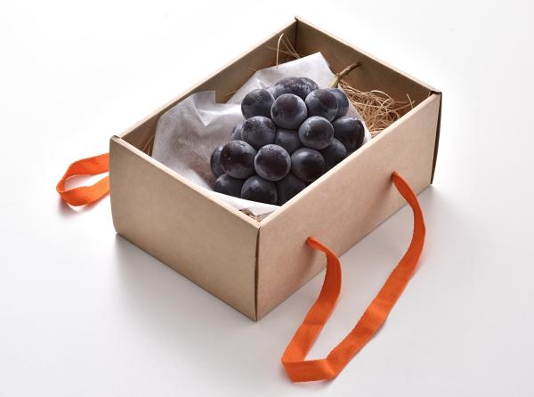 《沐果樂元》日本貓眼葡萄水果禮盒
