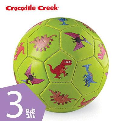 【悅兒園婦幼生活館】美國 Crocodile creek 3號兒童運動遊戲足球-恐龍世界(19.7cm)