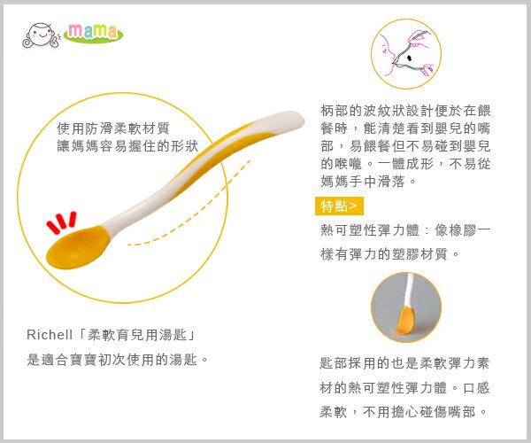 Richell利其爾 - ND 柔軟離乳食湯匙套裝 (盒裝) 4