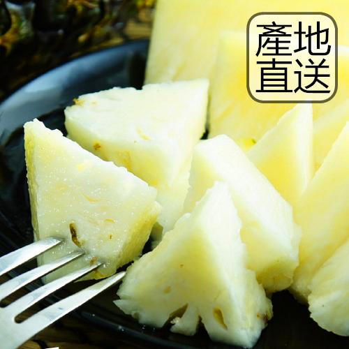 台農十三蜜鳳梨10斤裝