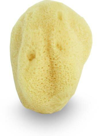 《雪文洋行》希臘天然嬰兒海綿7~9cm(小)-臉部專用