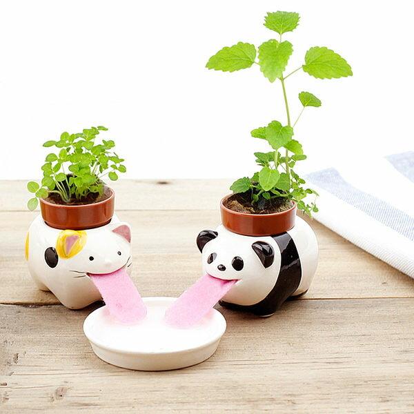 PS Mall 小盆栽迷你植物小花農可愛動物自動吸水 桌面微景觀盆栽~J584~ ~  好