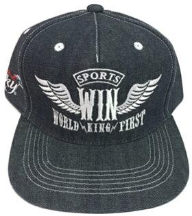WIN 翅膀 立體 電繡 棒球帽  平板帽 免運