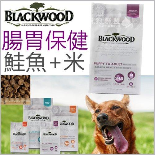 +貓狗樂園+ BLACKWOOD柏萊富【全犬。腸胃保健配方。鮭魚+米。5磅】570元