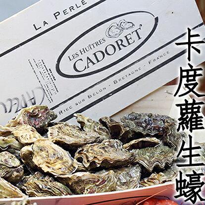 ㊣盅龐水產 ◇卡度蘿0號生蠔(法國)◇高品質大顆生蠔 蛤蠣 貝 烤肉 刺身 生蠔 餐廳 批發 團購