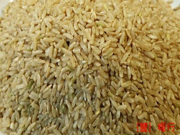 {豐}糧行 花蓮富里糙米(600公克)
