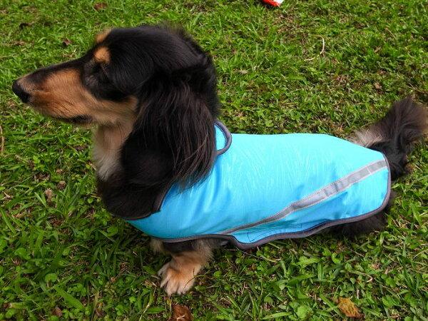 【綺康健康生活館】獨家寵物智慧衣(XL)中型犬偏胖/C1淺藍色