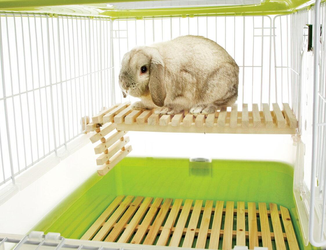 【恰恰】《日本Marukan》MR-614天然木兔兔專用吊橋/調節式層板/跳台 2