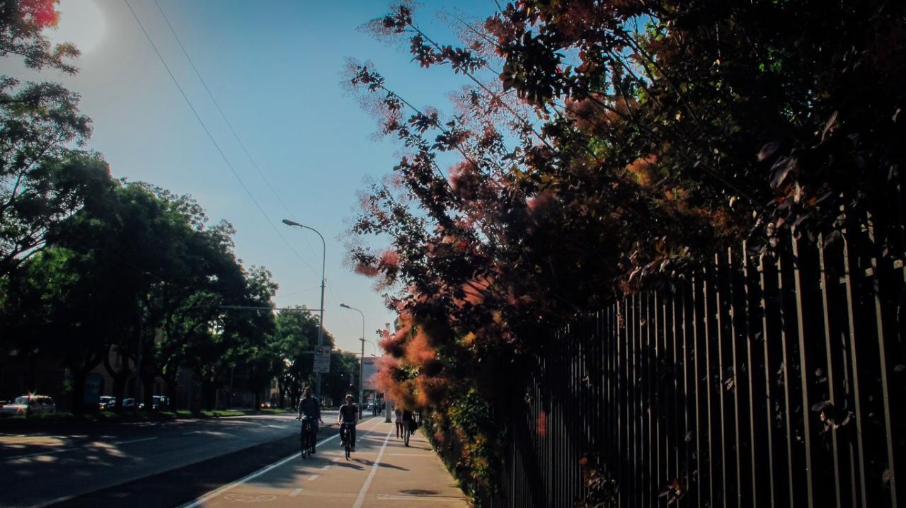 ~世界旅行 小幅作品~紅袖招-紅花街景^(29002^) ~  好康折扣