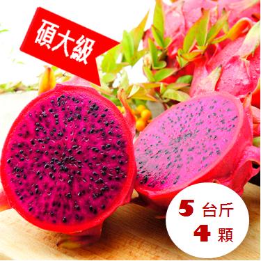 5台斤碩大帝王級紅龍果~侏羅紀果園產地直達~紅肉火龍果 紅龍果 新鮮 juicy 甜度18