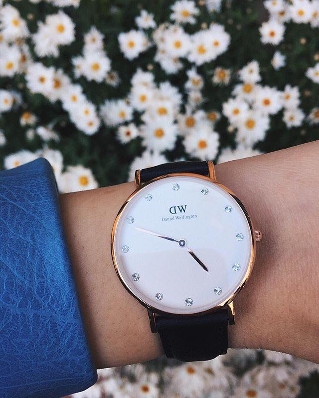 【Daniel Wellington】DW手錶CLASSY SHEFFIELD 34MM(免費贈送另一組表帶) 5