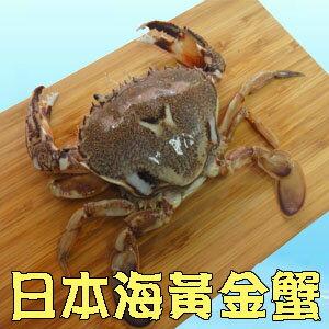 [鮮德]-日本海黃金蟹(4入裝)