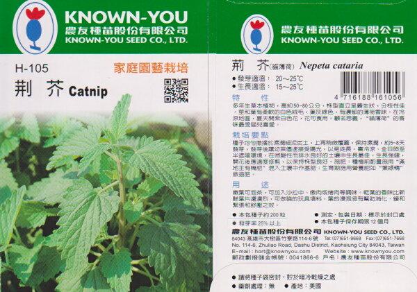 【尋花趣】農友種苗 荊芥(貓薄荷) 香藥草種子  每包約200粒 保證新鮮種子
