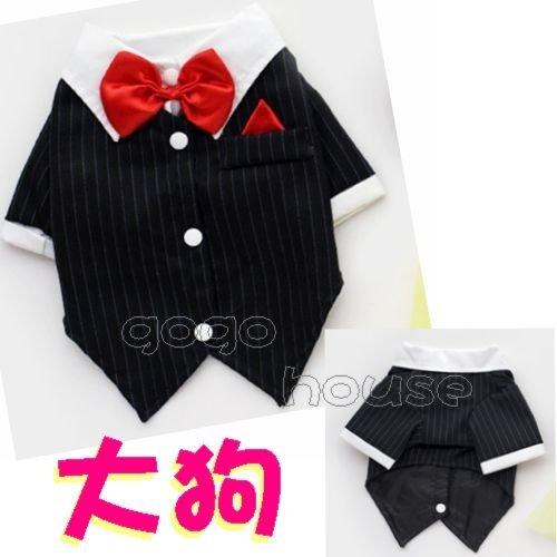 ☆狗狗之家☆結婚禮服 西裝 燕尾服 紅領結 中型犬