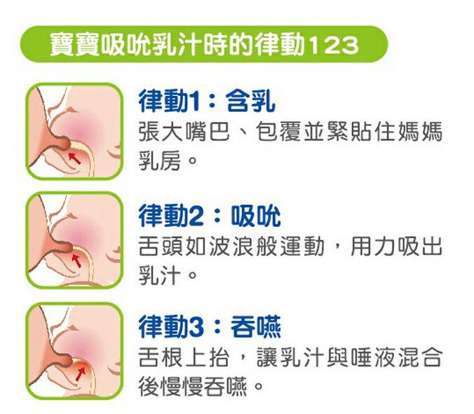 nac nac - 吸吮力學標準奶嘴M (2入) 2