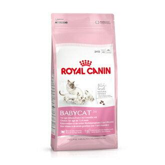 毛大王★【貓飼料】ROYAL CANIN 皇家 離乳貓 BC34 0.4kg