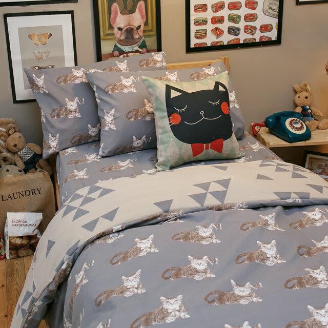 Iron cat 鐵灰小貓【床包鐵灰小貓】單人/雙人熱賣組 舒適磨毛布 台灣製造