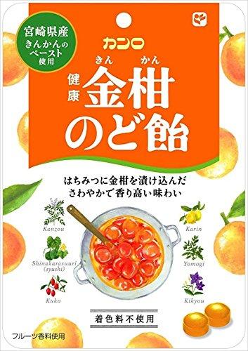 有樂町進口食品 日本KANRO-健康金柑喉糖90g J60 4901351011386 - 限時優惠好康折扣