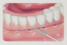GUM SOFT PICK 軟式牙間牙籤清潔棒 240p*『康森銀髮生活館』無障礙輔具專賣店 3