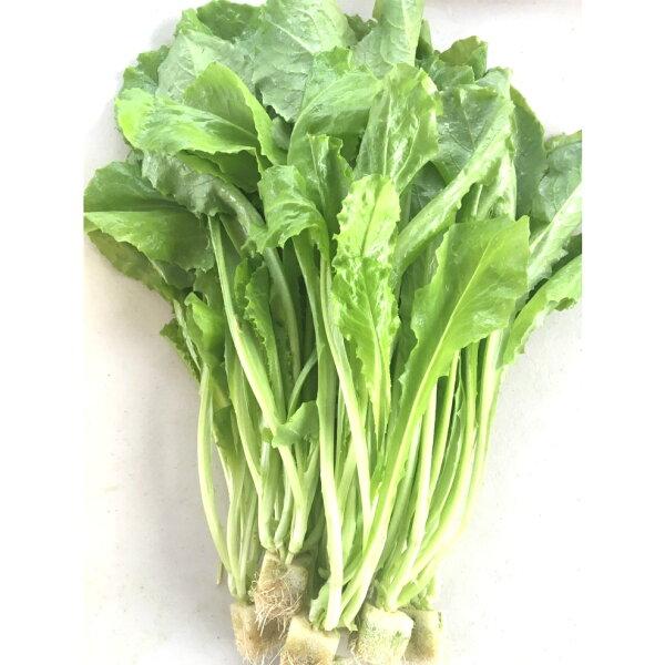 『水野菜』無農藥「A菜」250g