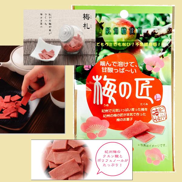 有樂町進口食品 日本進口 日本梅之匠 梅片 板梅 梅干 15g J32 4977202309087