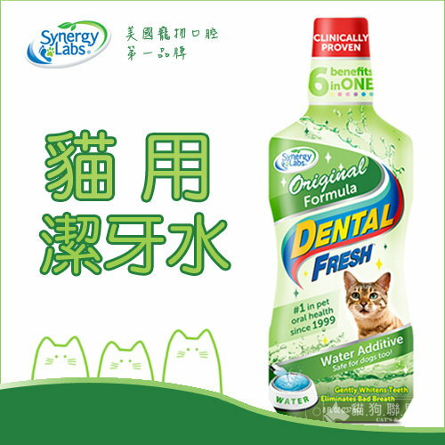+貓狗樂園+ Synergy Labs【Dental Fresh貓用潔牙水。8oz】280元