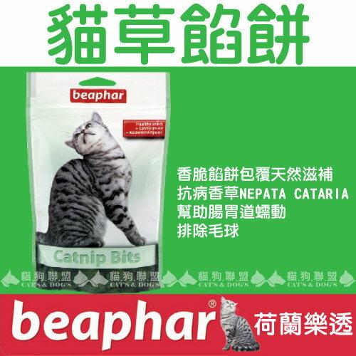 +貓狗樂園+ 荷蘭beaphar【樂透愛貓貓草餡餅。小。35g】90元 0
