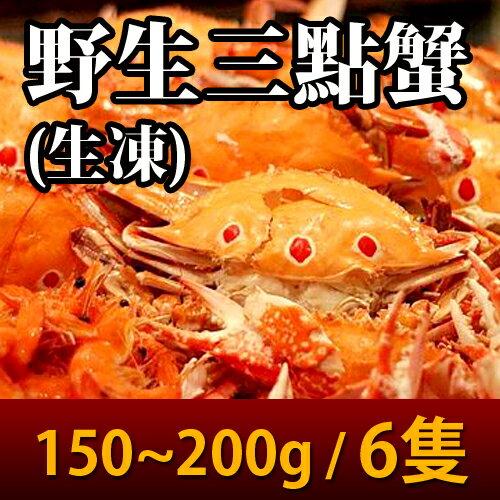 【台北濱江】生凍野生三點蟹(150~200g隻)6隻裝