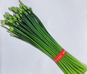 【尋花趣】韭菜花種子 每包約50粒 無藥劑處理