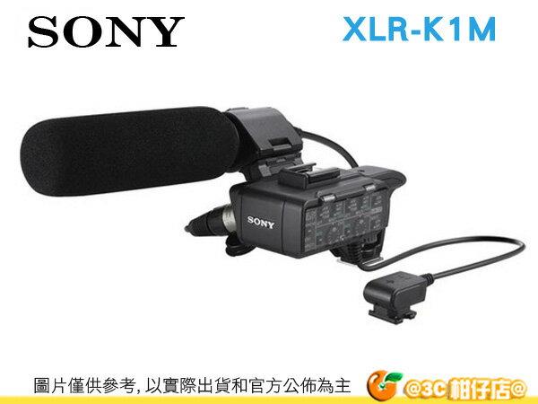Sony XLR-K1M 高感度指向性麥克風 適用 NEX-VG900 NEX-VG30 PJ790V A7R A7 A99V RX10